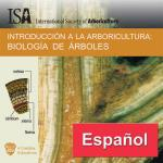 Tree Biology CD in Spanish