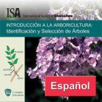 Tree Identification & Selection in Spanish