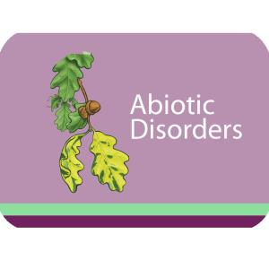 Abiotic Disorders Course