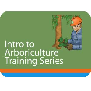 Intro to Arb Series