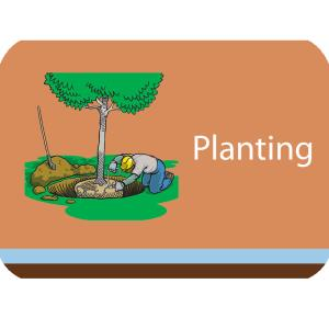 Planting Course