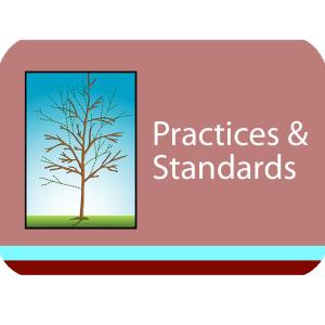Practices & Standards Course