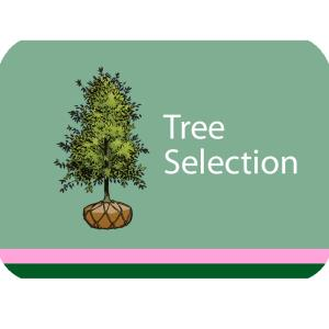 Tree Selection Course