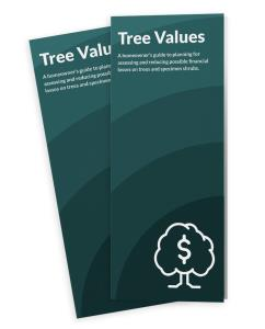 Tree Values
